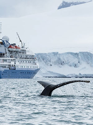 Adventure / Exploration vacation travel - Antarctica Express Air Cruise